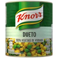 Dueto Knorr 170G - Cód. 7891150058873C24